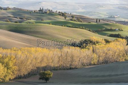 italy tuscany san quirico dorcia hills