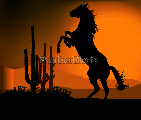 mustang sunset background