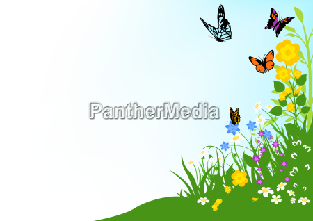 background of butterflies and wildflowers