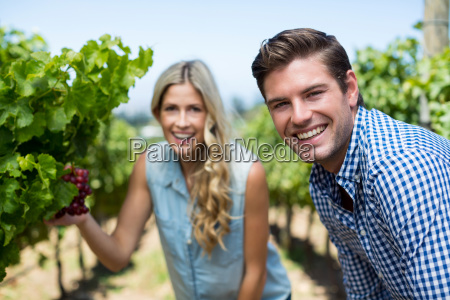 portrait of smiling couple by grapes