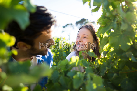 happy couple seen through plants at