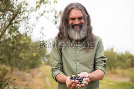 happy man holding harvested olives in