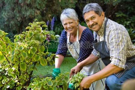 smiling senior couple gardening in the