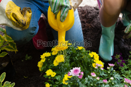 low section of girl watering flowers
