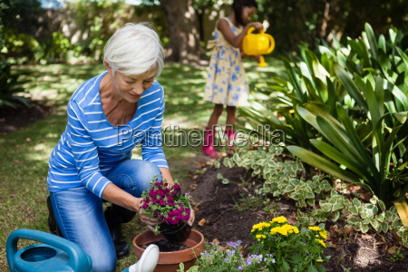 smiling senior woman planting flowers while