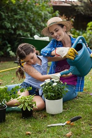 tochter, hilft, mutter, bei, bewässerung, von - 23120401