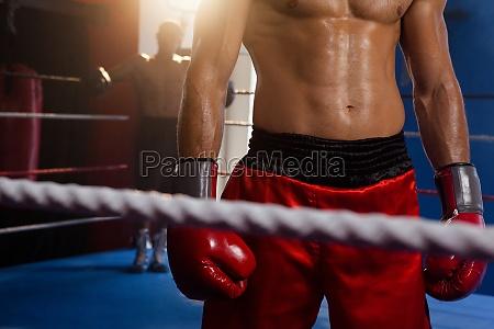 boxer stehen im boxring
