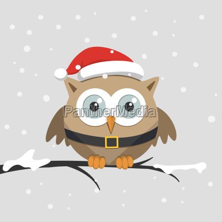 weihnachten maennliche eule mit weihnachtsmann hut