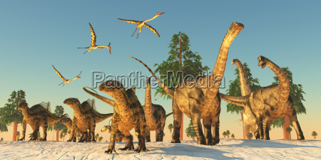 dinosaurier duerre migration