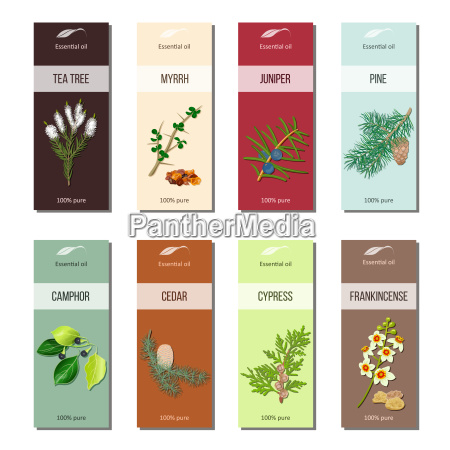 essential oil labels collection tea tree