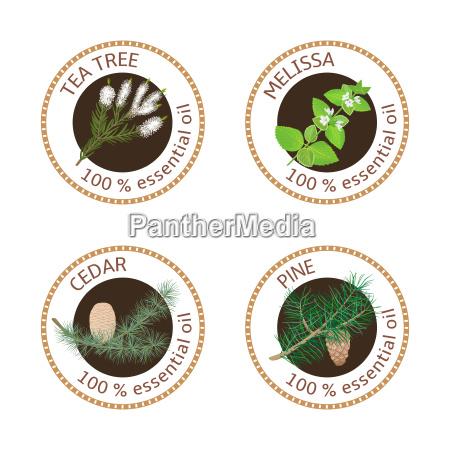 set of essential oils labels pine
