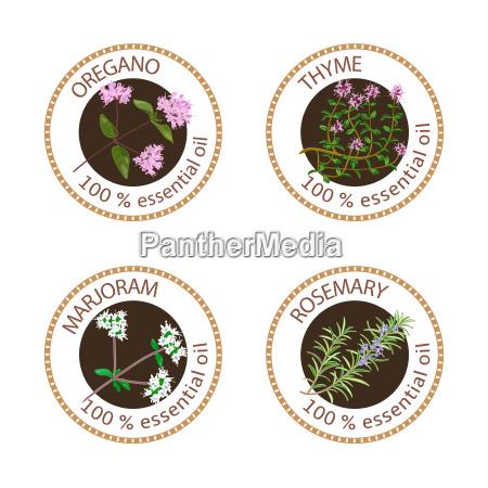 set of essential oils labels oregano