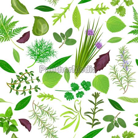 cooking herbs seamless pattern vector set