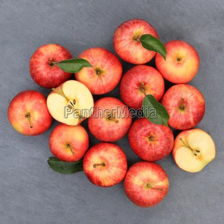 apples apple red fruit slate square