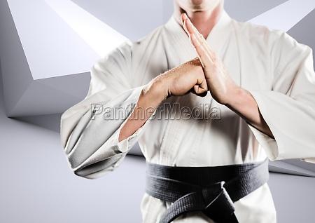 zusammengesetztes bild des karateka das kung