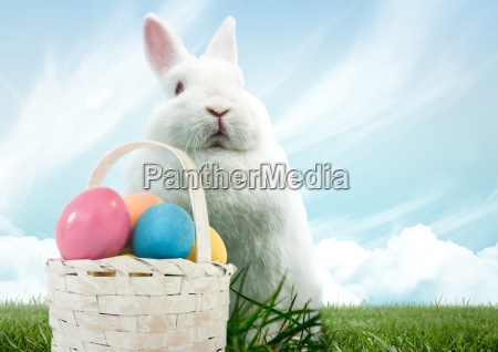 easter rabbit with basket of eggs