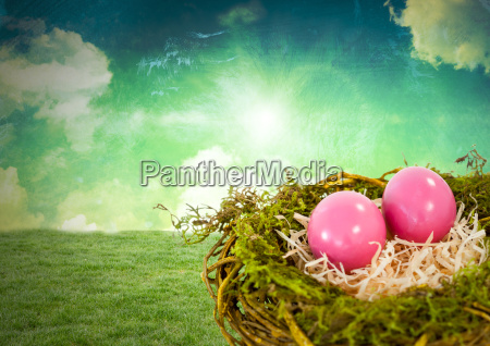 easter eggs in nest in front