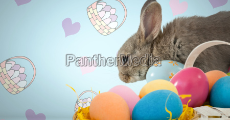 easter rabbit with eggs in front