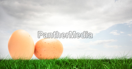 eggs in front of cloudy sky