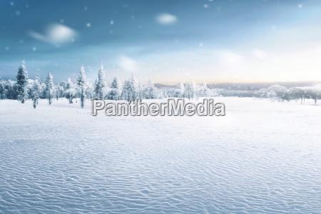 landschaft des schneebedeckten feldes mit gefrorenen