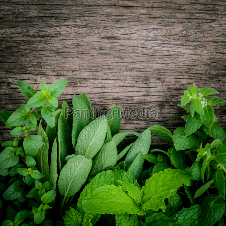 various aromatic herbs and spices from