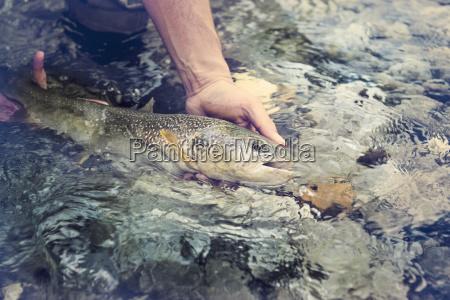 slowenien mann fliegen angeln in soca