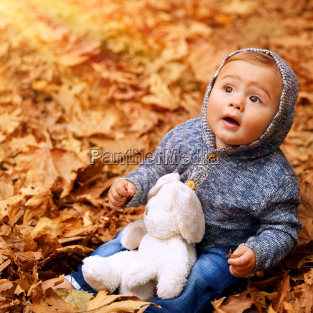 little boy in autumn forest