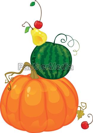 gesundheit kirsche birne kuerbis wassermelone organisch