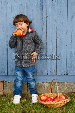 child young apple fruit fruits eat