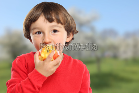 apple eating child fruit fruits healthy