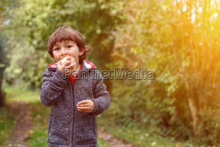 kleiner junge kind apfel obst fruechte