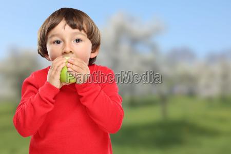 apple eating child fruit green fruits