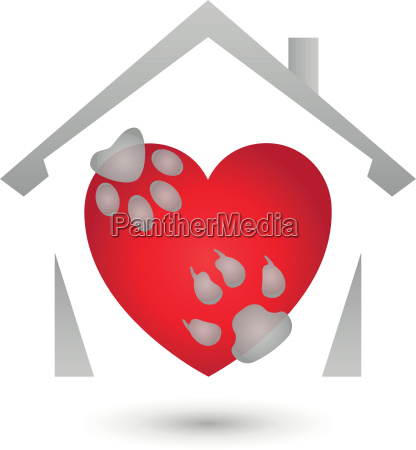 house and paws dog and cat