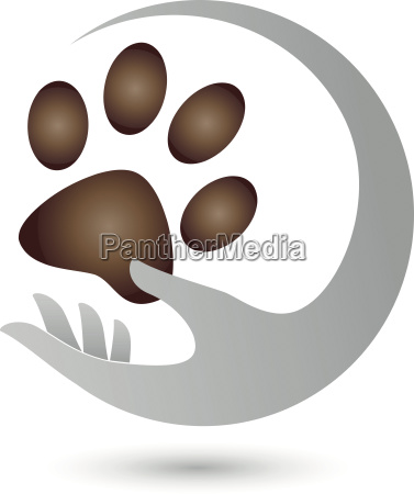 hand and paw cats paw cats