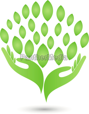 two hands leaves naturopaths logo