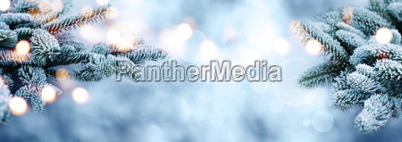 rime covered bokeh with branches in