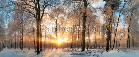 winter landscape magical sunset in the