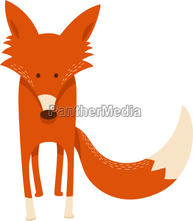 cute cartoon red fox animal character