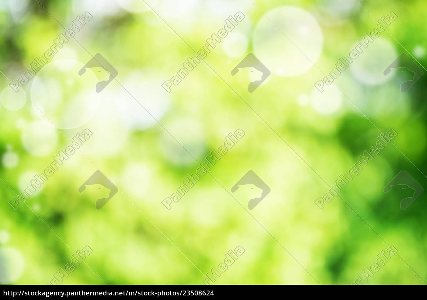 abstract, green, bright, bokeh, background - 23508624