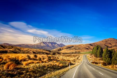 road through new zealand
