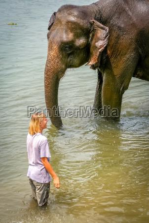 tourist and elephant