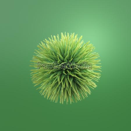 hairy green ball 3d rendering
