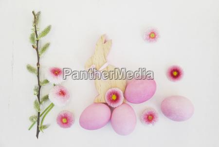 stilleben farbe blume pflanze gewaechs holz