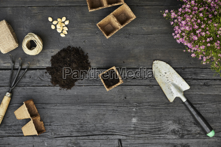 gardening tools seeds and blooming plants
