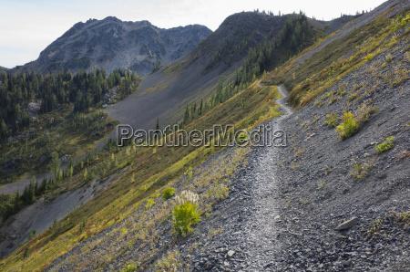 wanderweg in den north cascades pacific