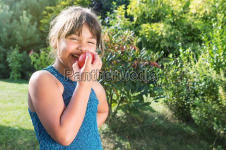 laughing little girl tasting fresh tomato