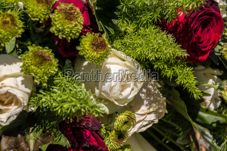 white and red roses on the