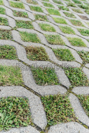 paving stones with different grasses and