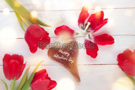 valentines day with tulips around a