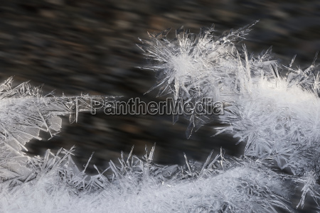 close up of ice forming along